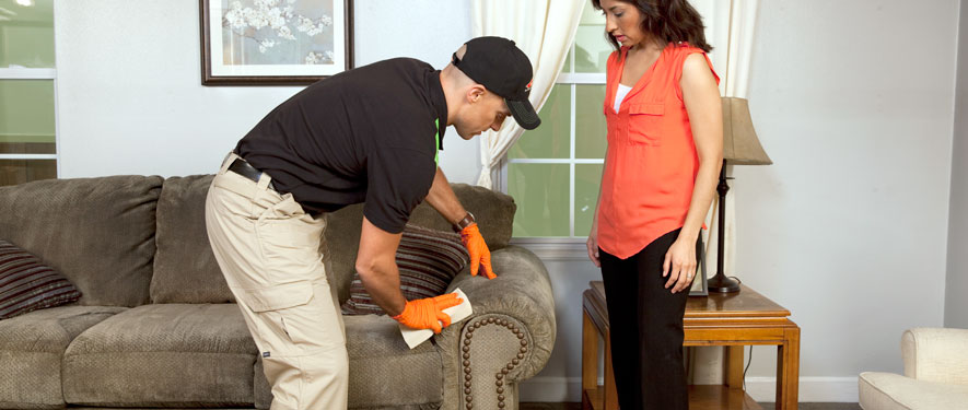 Buena Park, CA carpet upholstery cleaning